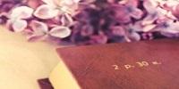加倍学习网收集2011年6月18日四川绵阳、乐山、眉山、凉山州事业单位笔试真题