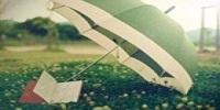 加倍学习网收集2015上半年上海事业单位招聘闵行某高校会计岗位面试真题解析(5月12日)